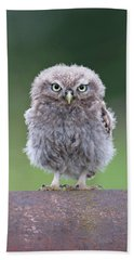 Fluffy Little Owl Owlet Beach Towel