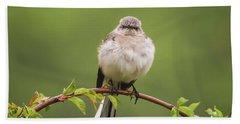 Fluffy Mockingbird Beach Towel by Terry DeLuco