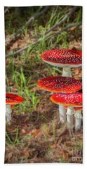 Fly Agaric Amanita Muscaria Beach Sheet