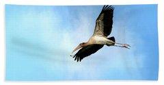 Fly By 2 Beach Sheet