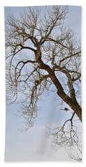 Flying Goose By Great Tree Beach Towel