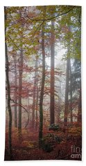Beach Towel featuring the photograph Fog In Autumn Forest by Elena Elisseeva