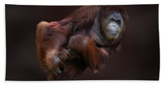 Folded Orangutan Beach Towel