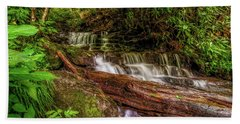 Beach Towel featuring the photograph Forest Falls by Christopher Holmes