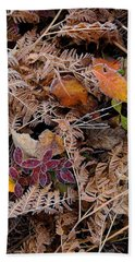 Beach Towel featuring the photograph Forest Ferns by Doug Gibbons