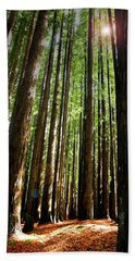 Forest Glade Beach Towel by Marion Cullen