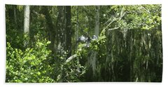 Forest Of The Swamp Beach Towel