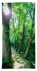 Beach Towel featuring the photograph Forest Path by Bee-Bee Deigner