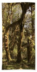 Forest Setting In Hoh Rain Forest Beach Towel