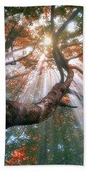 Forest With Fog And Sun Rays Beach Sheet