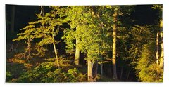 Forests Edge Beach Sheet
