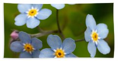 Forget-me-not Beach Sheet