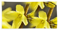 Forsythia Three Beach Sheet