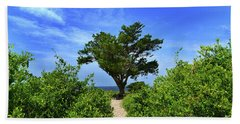 Fort Fisher Hilltop Tree Beach Towel