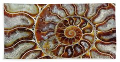 Fossilized Ammonite Spiral Beach Towel