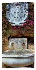 Beach Towel featuring the photograph Fountains And Flowers At The Roman Walls In Tarragona by Eduardo Jose Accorinti