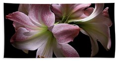 Four Pink Amaryllis Blooms Beach Sheet
