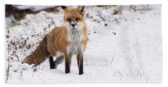 Fox 4 Beach Towel