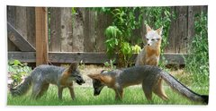 Fox Family Beach Towel