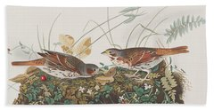 Fox Sparrow Beach Towel by John James Audubon