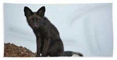 Fox Stare Beach Towel