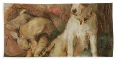 Fox Terrier With The Day's Bag Beach Towel by English School