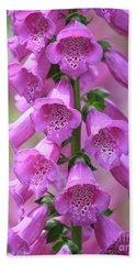 Beach Sheet featuring the photograph Foxglove Flowers by Edward Fielding