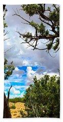 Frame By Juniper Beach Towel