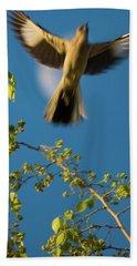 Free Bird Beach Towel