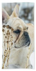 French Bulldog In The Snow Beach Towel