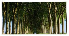 French Tree Lined Country Lane Beach Towel