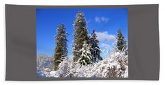 Beach Towel featuring the photograph Fresh Winter Solitude by Will Borden