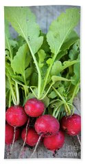 Beach Towel featuring the photograph Freshly Picked Radishes by Elena Elisseeva