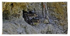Beach Towel featuring the photograph Friendly Frogs by Al Powell Photography USA