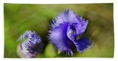Beach Towel featuring the photograph Fringed Gentian by Ann Bridges