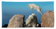 Leaping Baby Mountain Goat Beach Towel