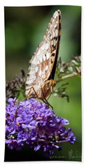 Fritillary Beach Sheet