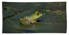 Beach Towel featuring the photograph Froggy 2 by Douglas Stucky
