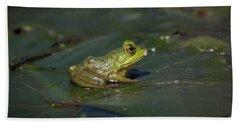 Beach Sheet featuring the photograph Froggy 2 by Douglas Stucky