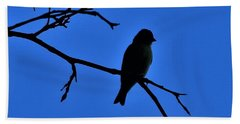 Blue Bird On Blue Beach Towel by John Glass
