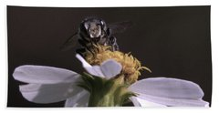 Frontal View Of A Bee On A Flower Beach Sheet