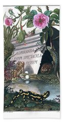Frontis Of Historia Naturalis Ranarum Nostratium Beach Towel