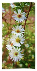 Frost Aster Beach Towel