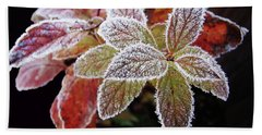 Beach Sheet featuring the photograph Frost Cluster by Betsy Zimmerli