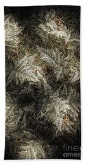 Frost Ferns Beach Towel