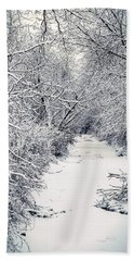 Frosted Feeder Beach Towel
