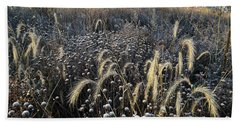 Frosted Foxtail Grasses In Glacial Park Beach Towel