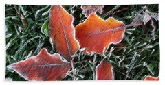 Beach Sheet featuring the photograph Frosted Leaves by Shari Jardina