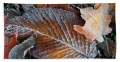 Beach Sheet featuring the photograph Frosted Painted Leaves by Shari Jardina