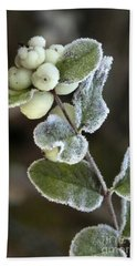 Frosted Snowberries Beach Towel